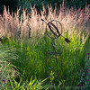 Armillary and grasses in early morning