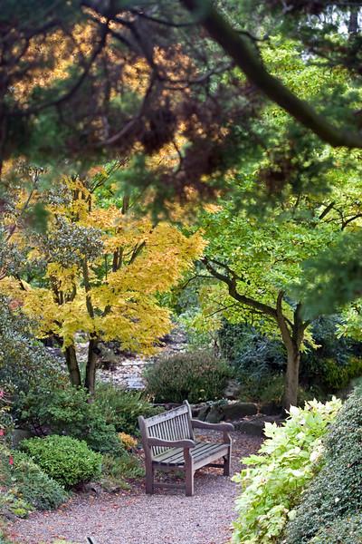 Birmingham Botanical Gardens view in autumn