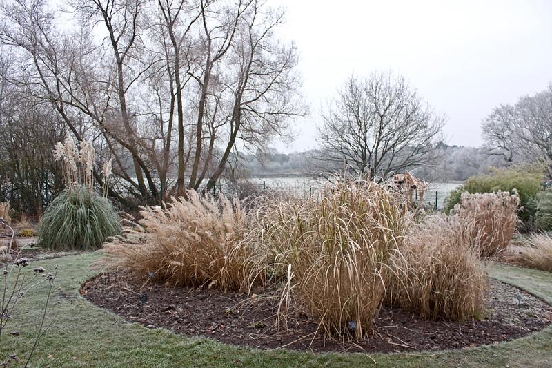 Birmingham Botanical Gardens in frost
