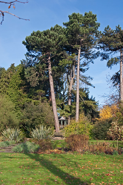 Birmingham Botanical Gardens view
