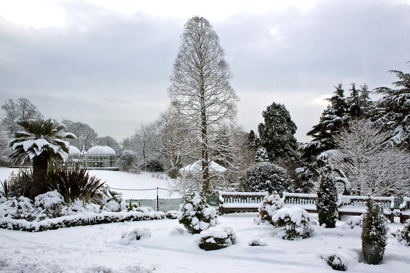Birmingham Botanical Gardens Lawn Aviary in snow