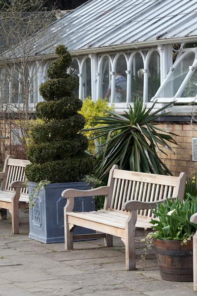 spiral topiary at Birmingham Botanical Gardens