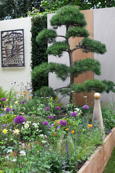 'Walker's Pine Cottage Garden' featuring topiary pines, a cloud-clipped specimen  and loose flowing planting