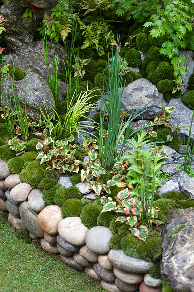 An Alcove (Tokanoma Garden) with moss mounds, houttyana, Acer, iris, pieris japonica
