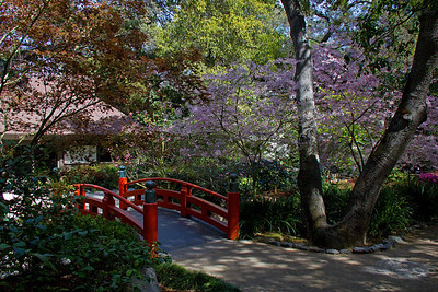 Japanese red bridge at Descanso Gardens