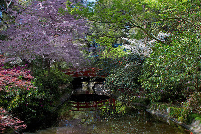 Japanese bridge in April at Descanso Gardens