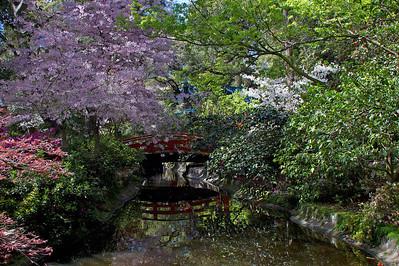 Descanso Japanese bridge at Descanso Gardens