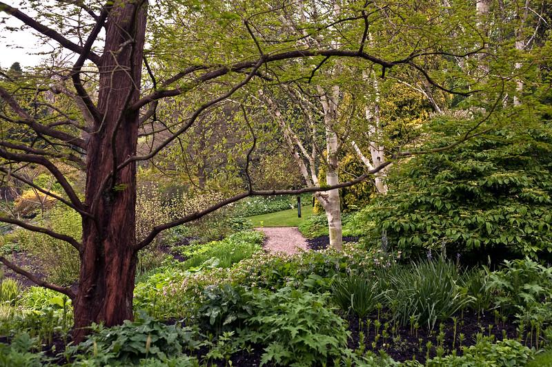 Dorothy Clive Garden