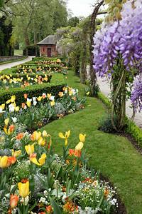 Spring Garden Paris