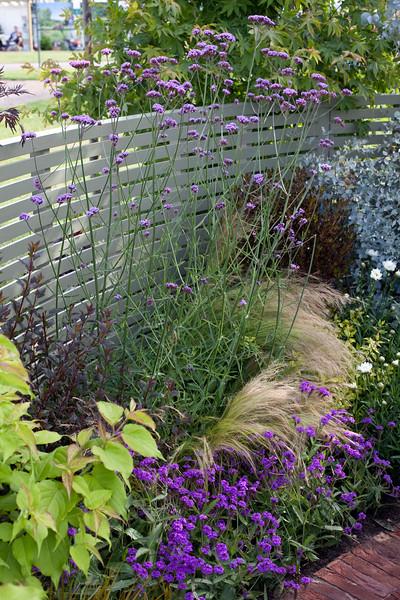Heart Healthy Garden Designed by Paul Baines and John Woods Nurseries, Malvern Spring Gardening Show 2011