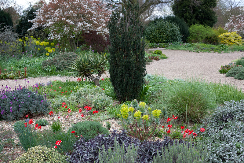 The Beth Chatto gravel Garden