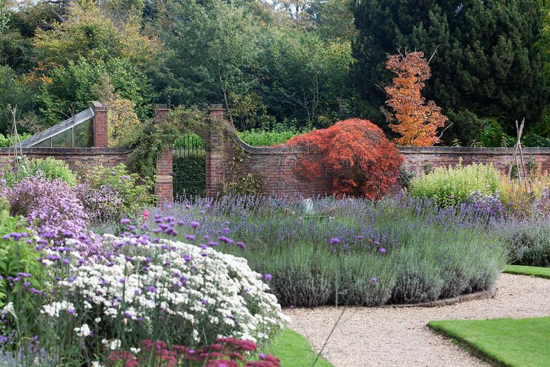 October in the rose garden at Winterbourne Botanic Garden