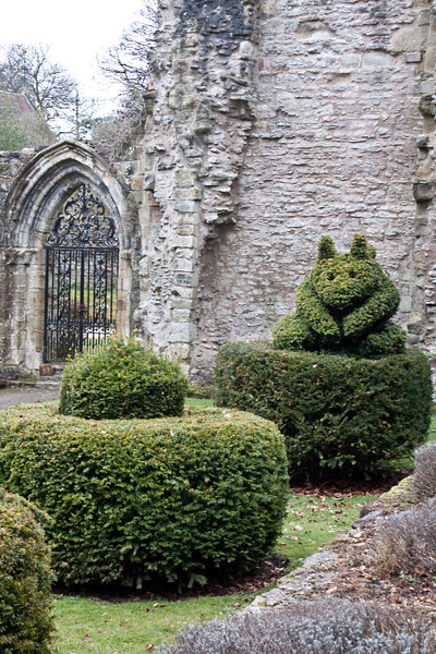 Topiary at Wenlock Priory