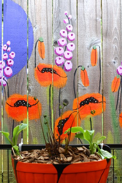 "The Poppy 'Room"" in the back yard garden is coming along nicely!  Still a lot more mural to paint but it's a good start"