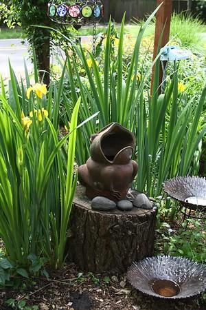 Garden May 20, 2009