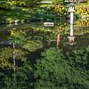 Japanese Garden Seattle 3