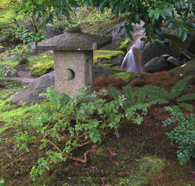 Japanese Garden Seattle 6