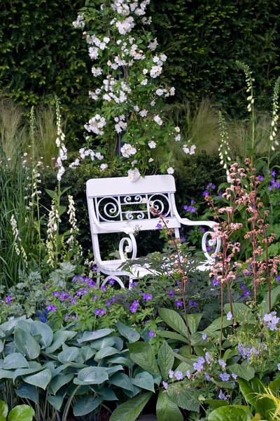 DETAIL OF PLANTING AND BENCH IN THE DAILY TELEGRAPH GARDEN, CHELSEA FLOWER SHOW 2007, DESIGNER ISABELLE VON GROENINGEN AND GABRIELLA PAPE