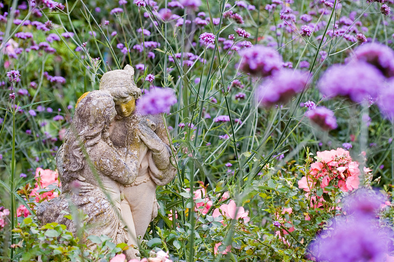 STATUE IN AMONGST VERBENA BONARIENSIS, SEPTEMBER