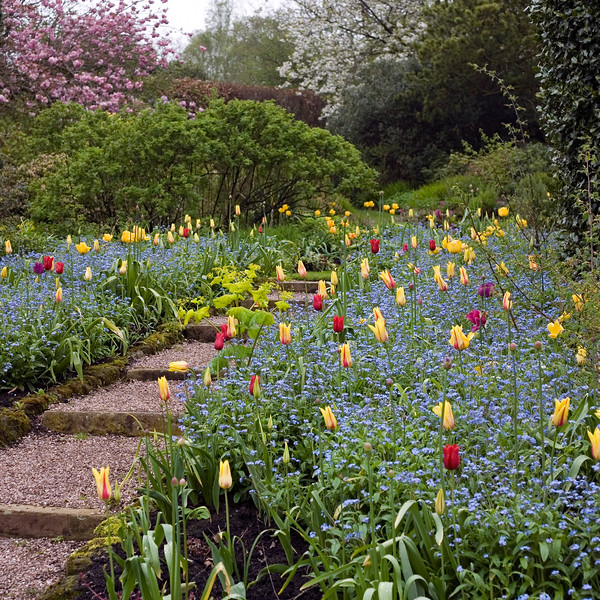 DOROTHY CLIVE GARDEN, WILLOUGHBRIDGE, SHROPSHIRE, MAY