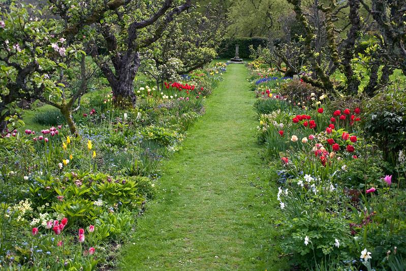 spring at Hergest Croft