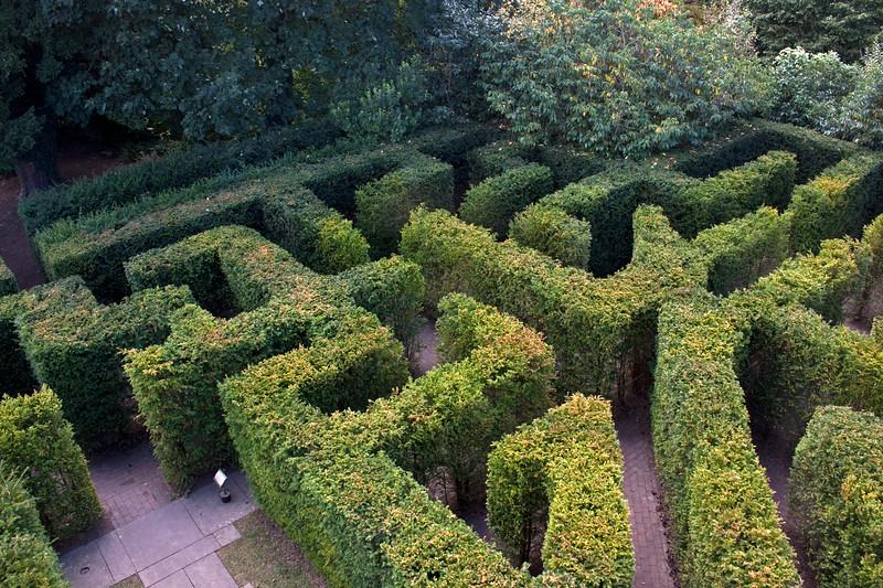 Hampton Court Garden, maze