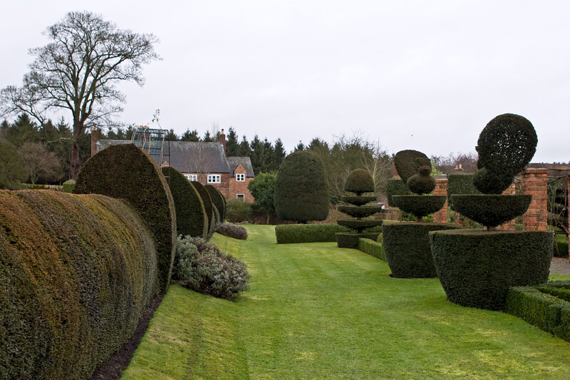 Topiary at Felley Priory