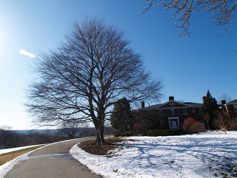 Winter, February 1