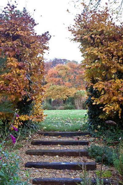 Winterbourne Botanic Garden autumn view