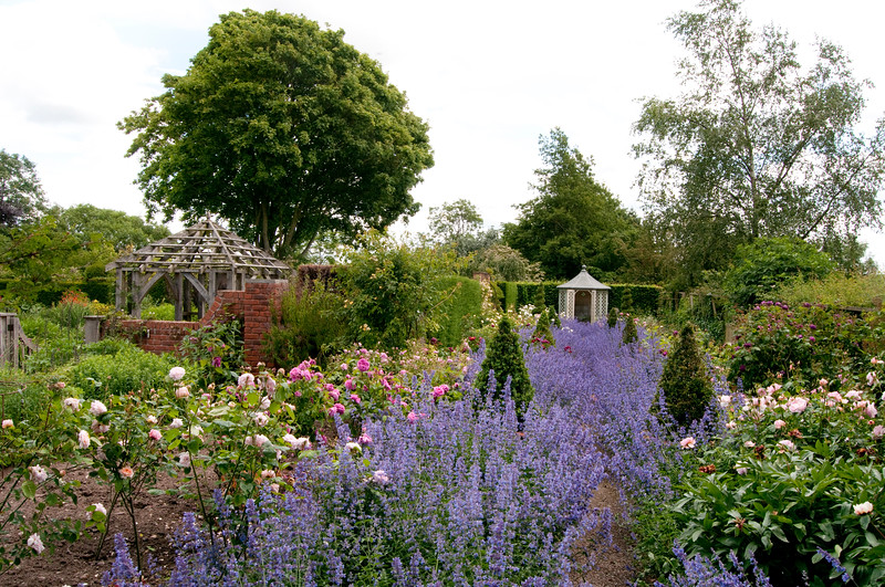 the rose garden at Wollerton Old Hall Garden, Shropshire, June,