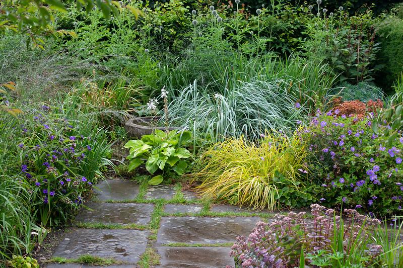 Alice's Garden at Wollerton Old Hall Garden, July
