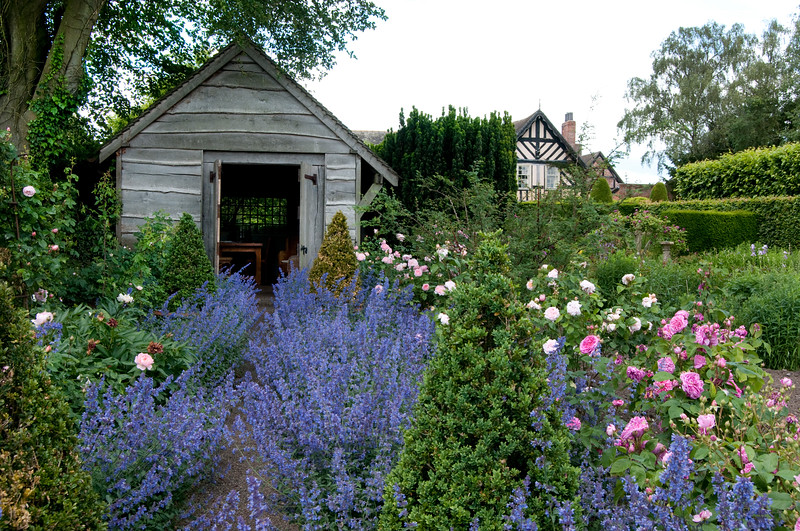 the rose garden at Wollerton Old Hall Garden, Shropshire, June,