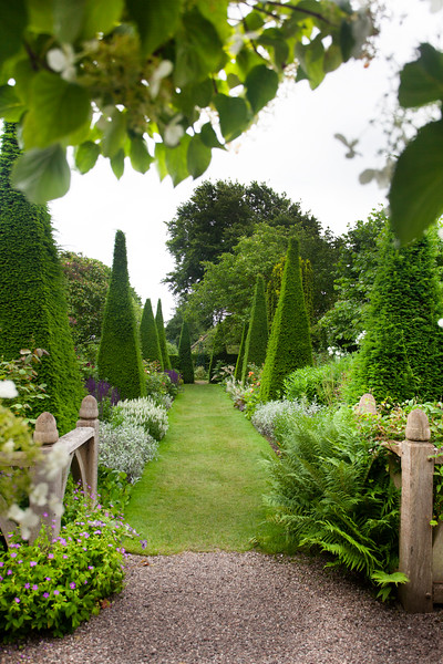 view into the Yew Walk at Wollerton Old Hall Garden, June