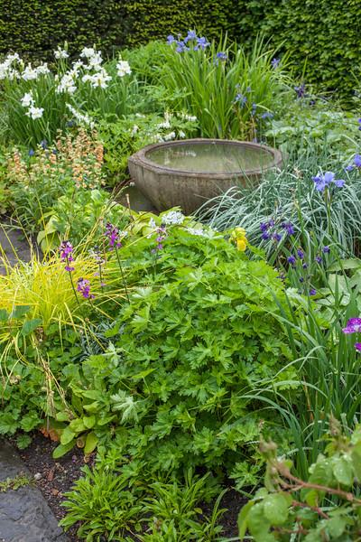 bird bath in Alice's Garden at Wollerton Old Hall Garden, May
