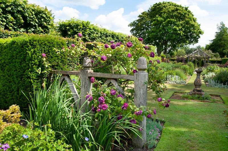 view through Alice's Garden to The Sundial Garden and Llanhydrock Garden beyond at Wollerton Old Hall Garden, Shropshire, June,
