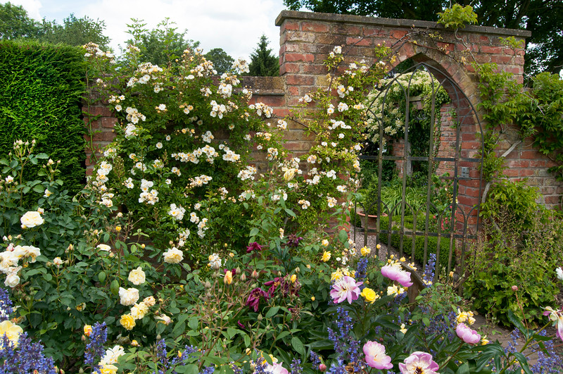 view from The Rose Garden to The Long Border at Wollerton Old Hall Garden