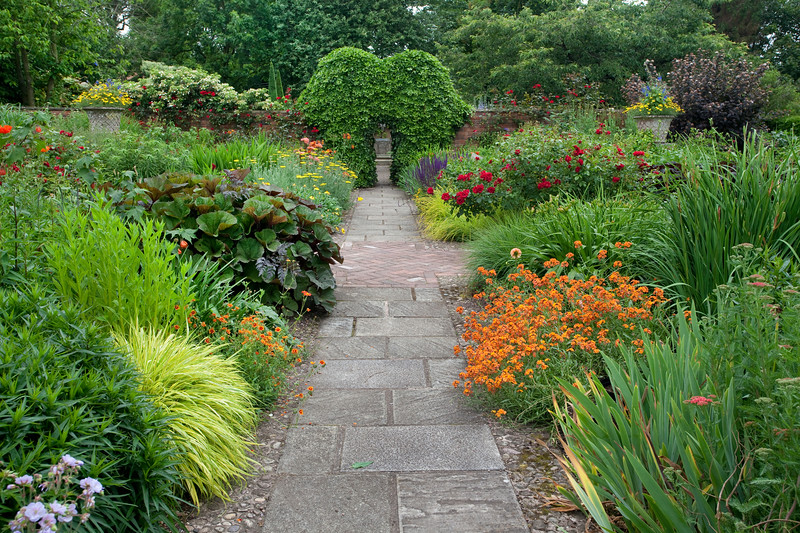 path through the hot borders in the Llanhydrock garden at Wollerton Old Hall Garden, June