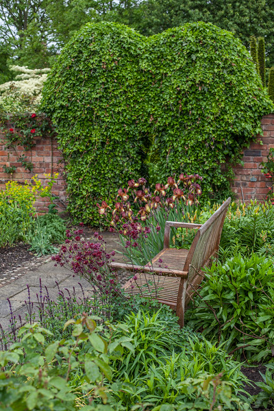 a bench in the hot border in the Llanhydrock Garden at Wollerton Old Hall Garden, May