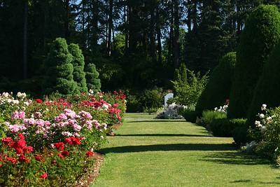 rosegarden03