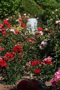 rosegarden15