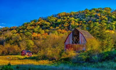 Fall 2015 near Rushford MN.