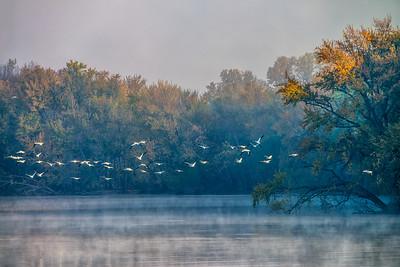 Foggy Mississippi morning.