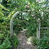 Rose Covered Arch