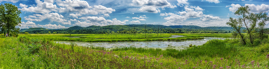 Whitewater River Pano and Bluffs near Alba, MN.