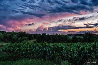 Corn and Wild Clouds. Watertown MN.