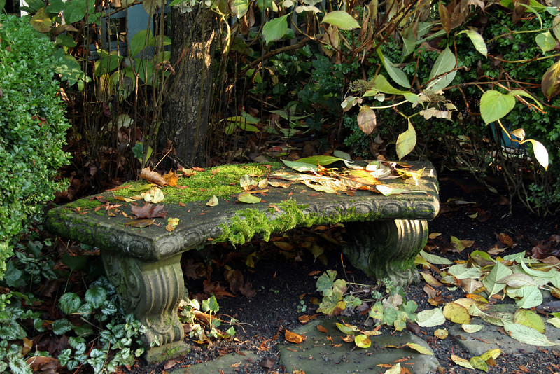 Garden Bench in the Fall
