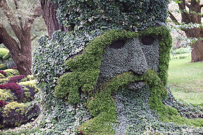 Forest King topiary