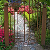 Iron Filigree Garden Gate