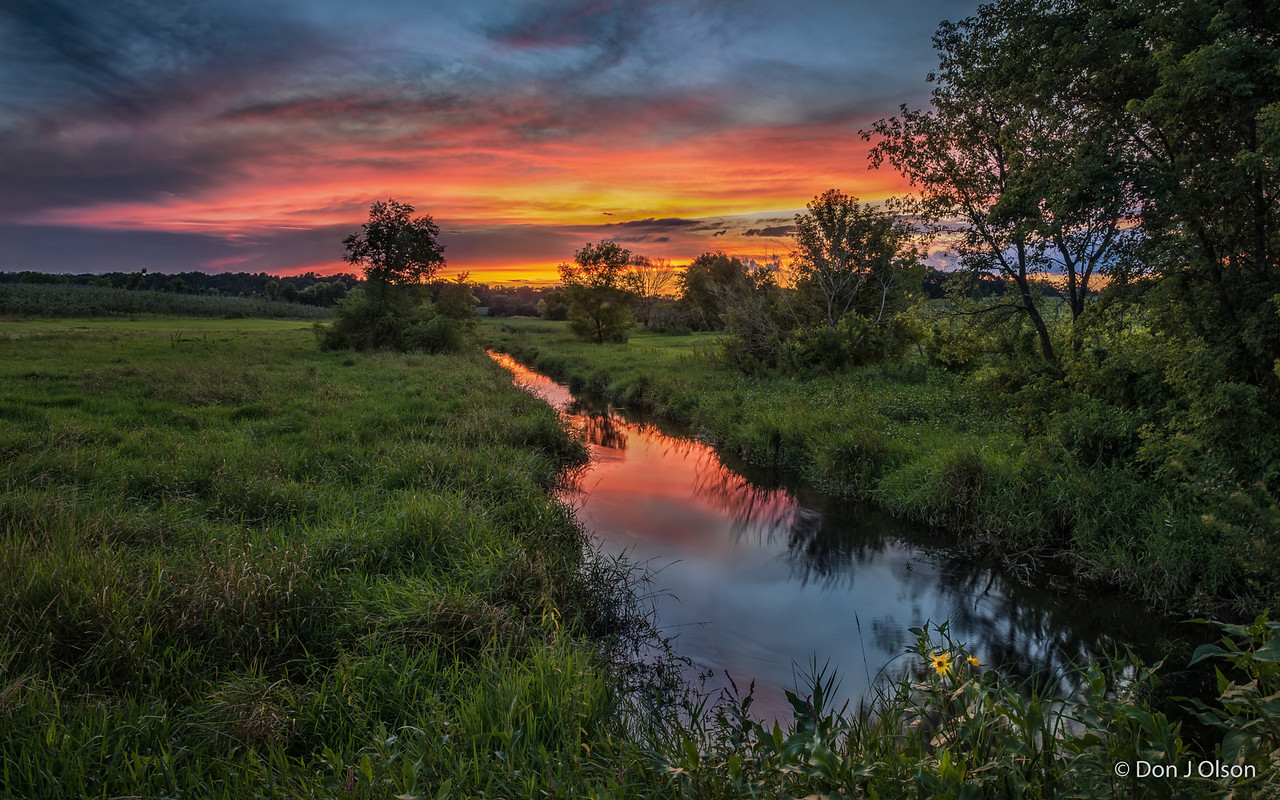 Luceline Orchard Creek & Wildflower at sunset. Aug 16, 2016