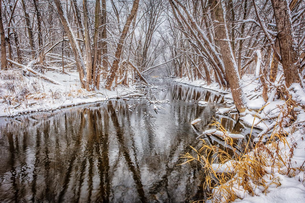 New snow on Rice Lake Creek-Watertown MN. 1